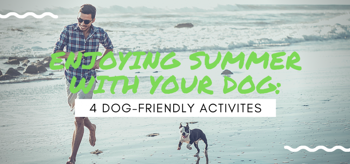 4 Dog Friendly Activities to do with your dog this summer
