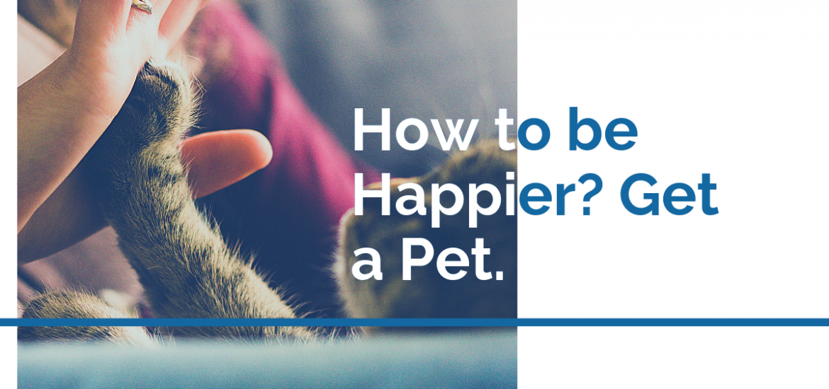 How to be Happier? Get a Pet.
