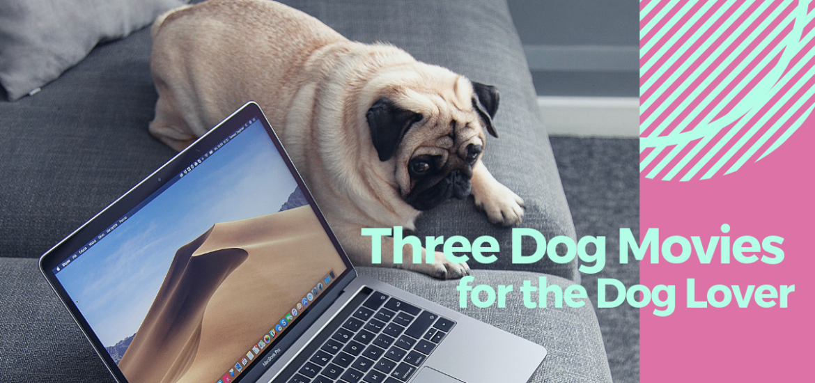 Three Dog Movies for the Dog Lover