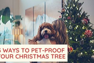 pet proof christmas tree