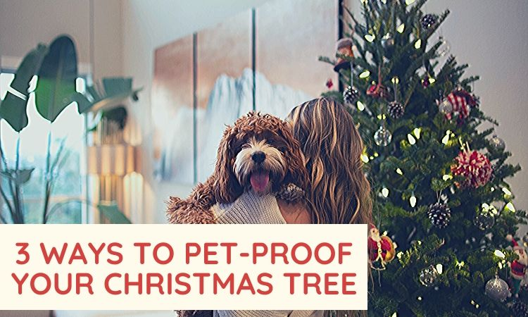 pet proof christmas tree